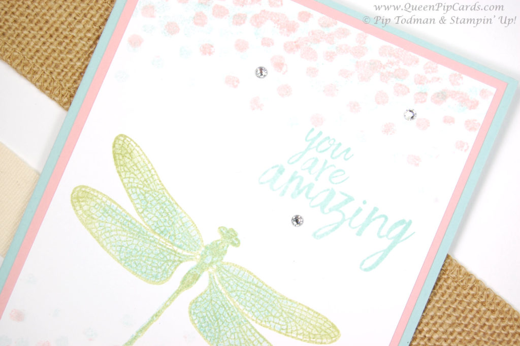 dreamy dragonfly designs