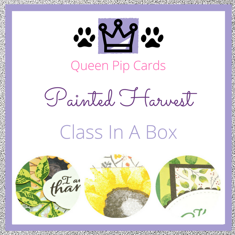 Painted Harvest Card Class In A Box with video tutorial! Pre-order your class spot today! Pip Todman Queen Pip Cards UK Stampin' Up! Demonstrator www.queenpipcards.com fb.me/QueenPipCards #queenpipcards #stampinup #papercraft #inspiringyourcreativity