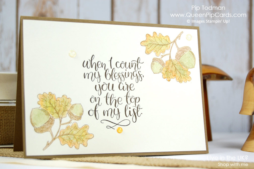 Count My Blessings With The Acorns! I love my Stampin' Up! friends!   Pip Todman Crafty Coach & Stampin' Up! Demonstrator in the UK Queen Pip Cards www.queenpipcards.com Facebook: fb.me/QueenPipCards  #queenpipcards #stampinup #papercraft #inspiringyourcreativity