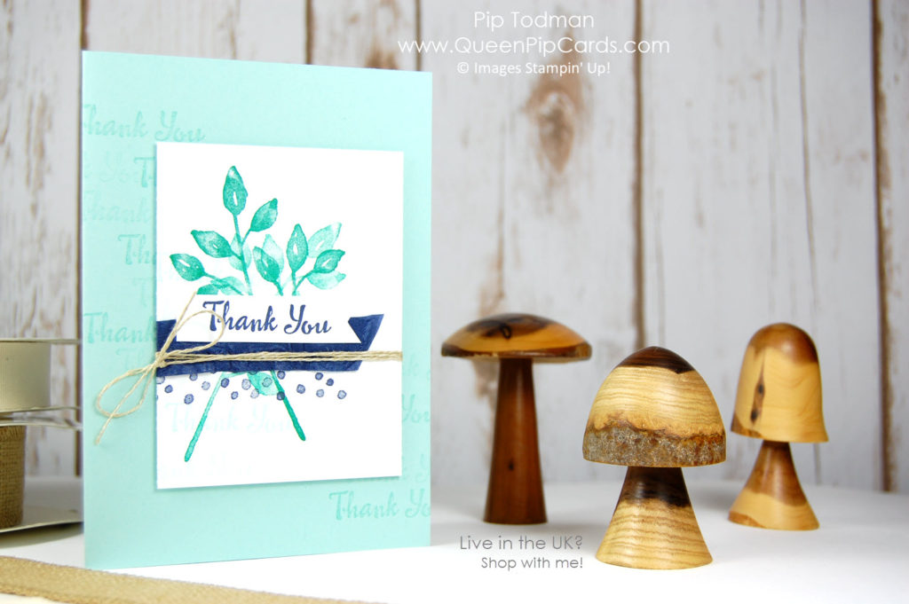 Sneak Peek Spring Summer 2018 with the Stampin' Creative design team! Check our Hop out! Pip Todman Crafty Coach & Stampin' Up! Demonstrator in the UK Queen Pip Cards www.queenpipcards.com Facebook: fb.me/QueenPipCards #queenpipcards #stampinup #papercraft #inspiringyourcreativity