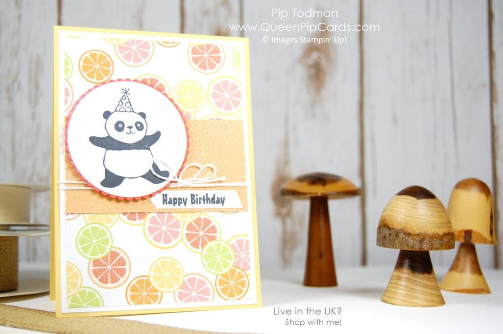 Party Pandas Meet Tutti Frutti. Sale-a-bration 2018. Fabulous cute stampset! Pip Todman Crafty Coach & Stampin' Up! Top UK Demonstrator Queen Pip Cards www.queenpipcards.com Facebook: fb.me/QueenPipCards #queenpipcards #stampinup #papercraft #inspiringyourcreativity