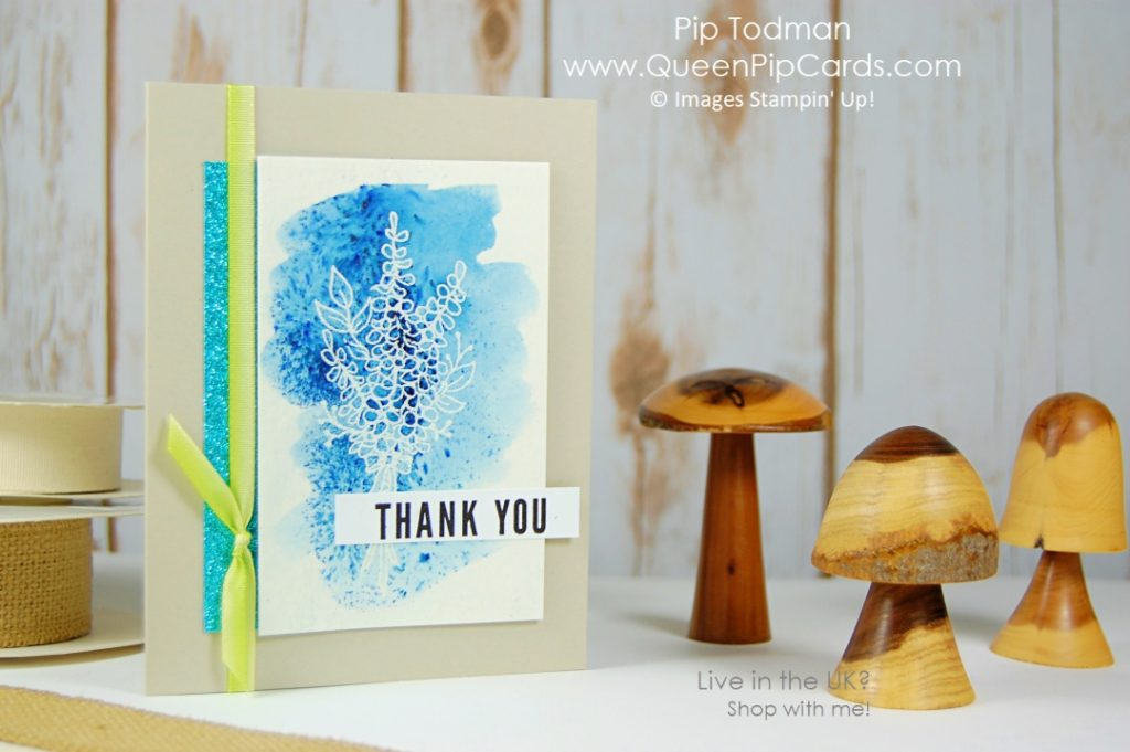 Final Sale-a-bration 2018 Hurrah - what's been the top 5 items this year?  Saleabration 2018  Pip Todman Crafty Coach & Stampin' Up! Top UK Demonstrator Queen Pip Cards www.queenpipcards.com Facebook: fb.me/QueenPipCards  #queenpipcards #stampinup #papercraft #inspiringyourcreativity #Saleabration2018