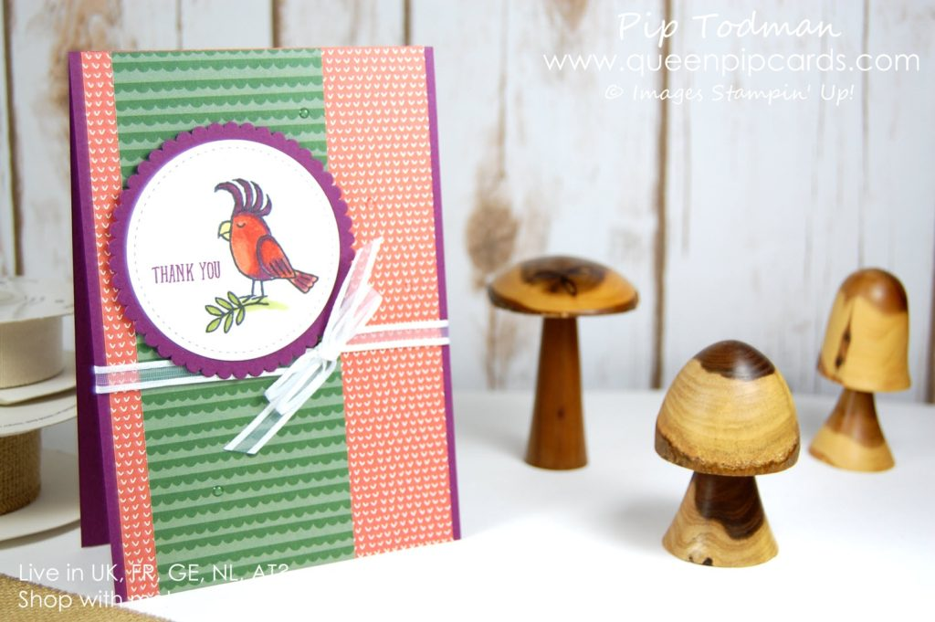 Getting Fruity with Bird Banter! No it's not risque haha made you look though eh! I just love how the Tutti Fruitti Designer Series Paper stack works so well with the colours of parrots! Love this stamp set the birds are so cute and funny! Spring / Summer 2018 Pip Todman Crafty Coach & Stampin' Up! Top UK Demonstrator Queen Pip Cards www.queenpipcards.com Facebook: fb.me/QueenPipCards #queenpipcards #stampinup #papercraft #inspiringyourcreativity
