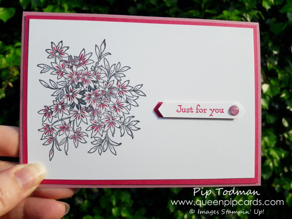 What Inspires My Card Designs - Here's my Awesomely Artistic creation based on my Alpine flower! All products available from my online store here: http://bit.ly/QPCShop Pip Todman Crafty Coach & Stampin' Up! Top UK Demonstrator Queen Pip Cards www.queenpipcards.com Facebook: fb.me/QueenPipCards #queenpipcards #inspiringyourcreativity #stampinup #papercraft
