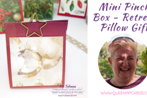Mini Pinch Box For Christmas Retreat Pillow Gift!! Today's video shows you a cute little mini pinch box. It was one of my pillow gifts for my Christmas Retreat guests! Come and see! All Stampin' Up! products are / will be available from my online store here: http://bit.ly/QPCShop Pip Todman Crafty Coach & Stampin' Up! Top UK Demonstrator Queen Pip Cards www.queenpipcards.com Facebook: fb.me/QueenPipCards #queenpipcards #simplystylish #inspiringyourcreativity #stampinup #papercraft
