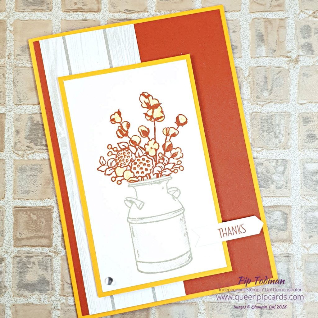 Country Home Card with Brand New Basics Episode 2 - Tools and stuff! Yes I'm back sharing my Facebook Live on things that brand new crafters, card makers, new to Stampin' Up! or new to me people might need to know. Tips about tools and how to use them, what they're called and what they're for! Plus a pretty card with Country Home made live on the show! All Stampin' Up! products are / will be available from my online store here: http://bit.ly/QPCShop Pip Todman Crafty Coach & Stampin' Up! Top UK Demonstrator Queen Pip Cards www.queenpipcards.com Facebook: fb.me/QueenPipCards #queenpipcards #simplystylish #inspiringyourcreativity #stampinup #papercraft