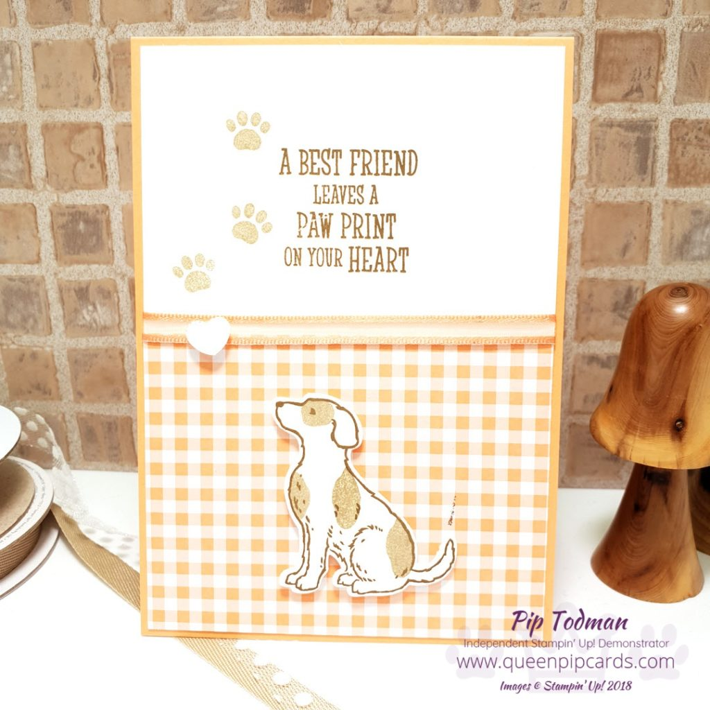 Adding Dimension With Happy Tails is the focus of this week's Brand New Basics video. Great for new card makers who want to understand the basics of card making, or for anyone who wants tips on using the Stampin' Up! products. This week it's dogs! All the details on what I used to make all 3 cards are on my blog - just click the link. All Stampin' Up! products are / will be available from my online store here: http://bit.ly/QPCShop Pip Todman Crafty Coach & Stampin' Up! Top UK Demonstrator Queen Pip Cards www.queenpipcards.com Facebook: fb.me/QueenPipCards #queenpipcards #simplystylish #inspiringyourcreativity #stampinup #simplestamping #papercraft