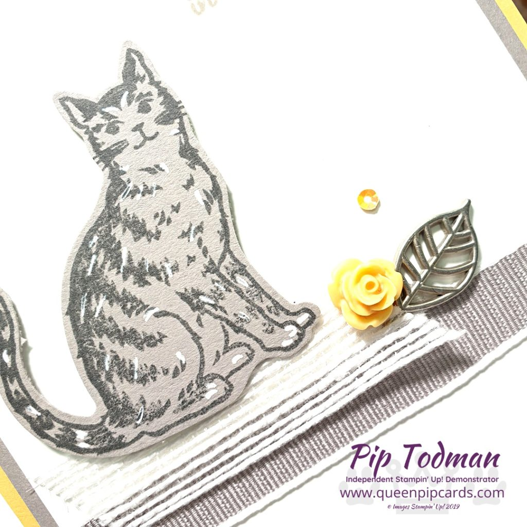 Embellishments With Nine Lives In my Brand New Basics video series this week I talk about how to use embellishments and which adhesives to use for them and ribbon etc All Stampin' Up! products are / will be available from my online store here: http://bit.ly/QPCShop Pip Todman Crafty Coach & Stampin' Up! Top UK Demonstrator Queen Pip Cards www.queenpipcards.com Facebook: fb.me/QueenPipCards #queenpipcards #simplystylish #inspiringyourcreativity #stampinup #simplestamping #papercraft