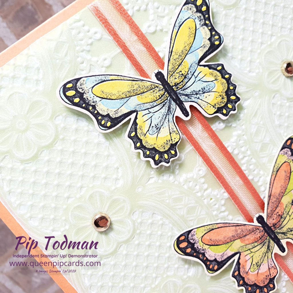 Lace Embossing Folder With Vellum A very pretty way to add dimension and texture to your cards. All Stampin' Up! products are / will be available from my online store here: http://bit.ly/QPCShop Pip Todman Crafty Coach & Stampin' Up! Top UK Demonstrator Queen Pip Cards www.queenpipcards.com Facebook: fb.me/QueenPipCards #queenpipcards #simplystylish #inspiringyourcreativity #stampinup #simplestamping #papercraft