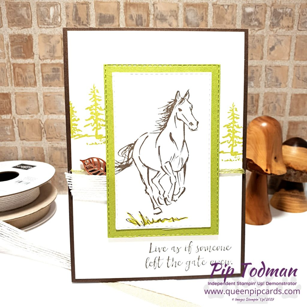 Let It Ride Card Ideas This set is perfect for any horse lovers in your life! The stamps are beautiful and the sentiments just fabulous too! All Stampin' Up! products are / will be available from my online store here: http://bit.ly/QPCShop Pip Todman Crafty Coach & Stampin' Up! Top UK Demonstrator Queen Pip Cards www.queenpipcards.com Facebook: fb.me/QueenPipCards #queenpipcards #simplystylish #inspiringyourcreativity #stampinup #simplestamping #papercraft