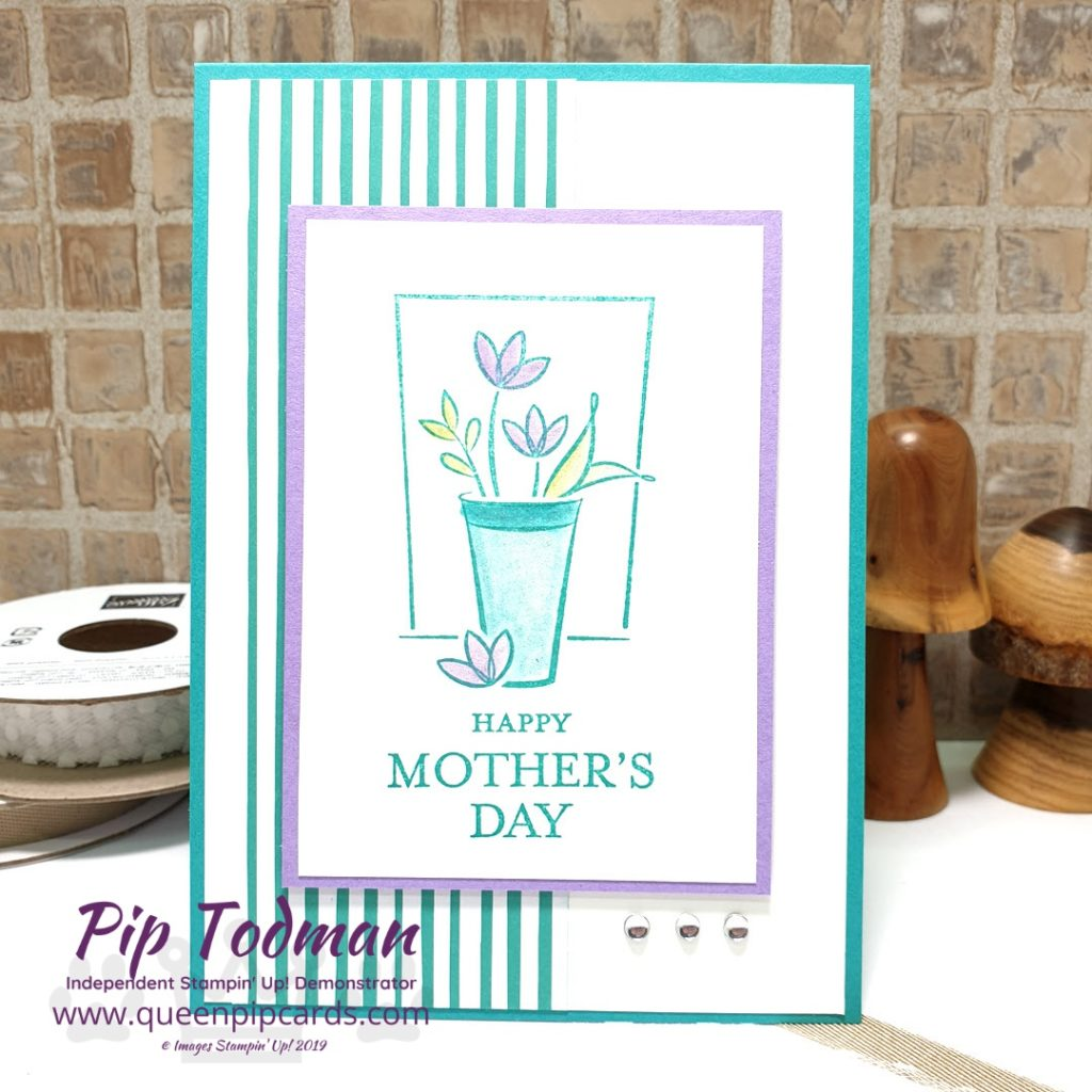 Springtime with Stampin Creative Blog Hop Love the fresh feel of Just Because Mother's Day flowers! Shop my online store here: http://bit.ly/QPCShop Pip Todman www.queenpipcards.com #queenpipcards #simplystylish #stampinup #simplestamping #papercraft
