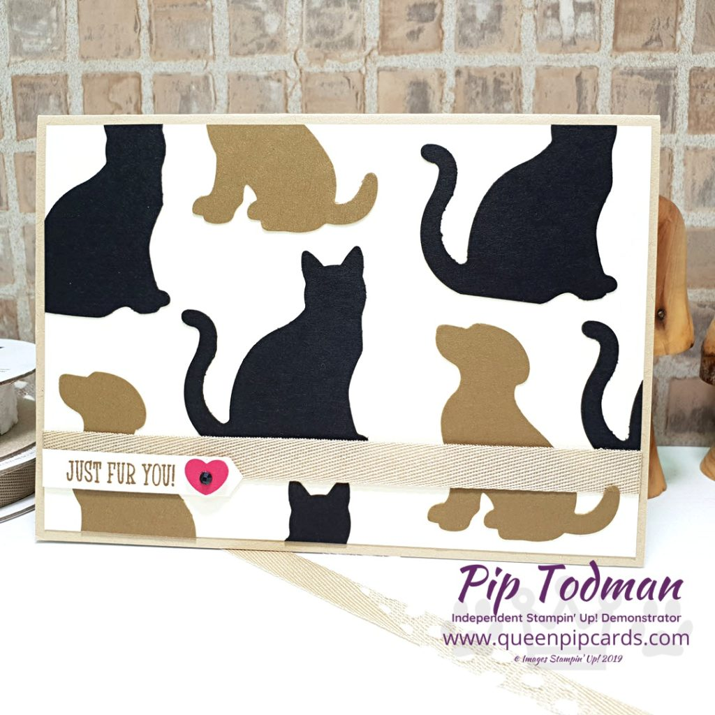 It's Raining Cats and Dogs is my card idea for you today. I love the punches from Stampin' Up! and how you can make them into something so cute! All Stampin' Up! products are / will be available from my online store here: http://bit.ly/QPCShop Pip Todman Crafty Coach & Stampin' Up! Top UK Demonstrator Queen Pip Cards www.queenpipcards.com Facebook: fb.me/QueenPipCards #queenpipcards #simplystylish #inspiringyourcreativity #stampinup #simplestamping #papercraft
