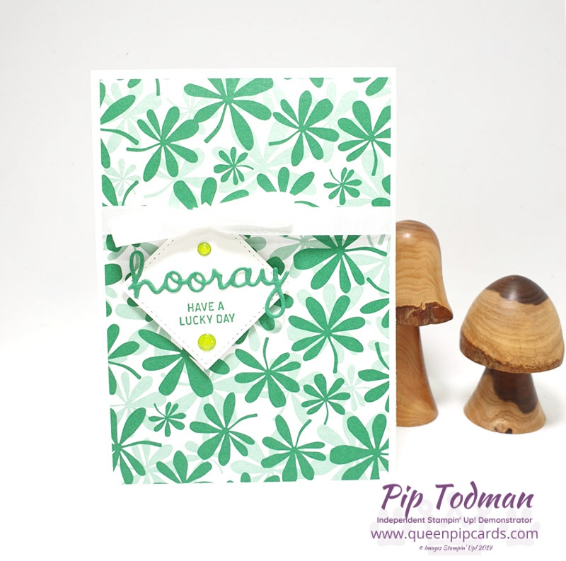 Lucky Day with Well Written by Stampin' Up! A bright, bold card for St Patrick's Day! Shop my online store here: http://bit.ly/QPCShop Pip Todman www.queenpipcards.com #queenpipcards #simplystylish #stampinup #simplestamping #papercraft
