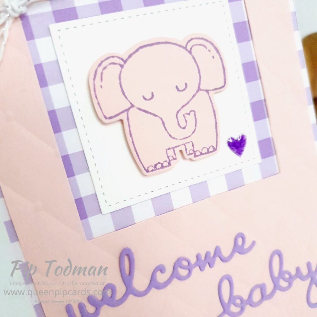 2 Baby Cards With A Little Wild. Such a cute stamp set and I loved picking out the best embossing folders to work with them. Giving a real feel of baby blankets! Pip Todman www.queenpipcards.com #queenpipcards #simplystylish #stampinup #simplestamping #papercraft