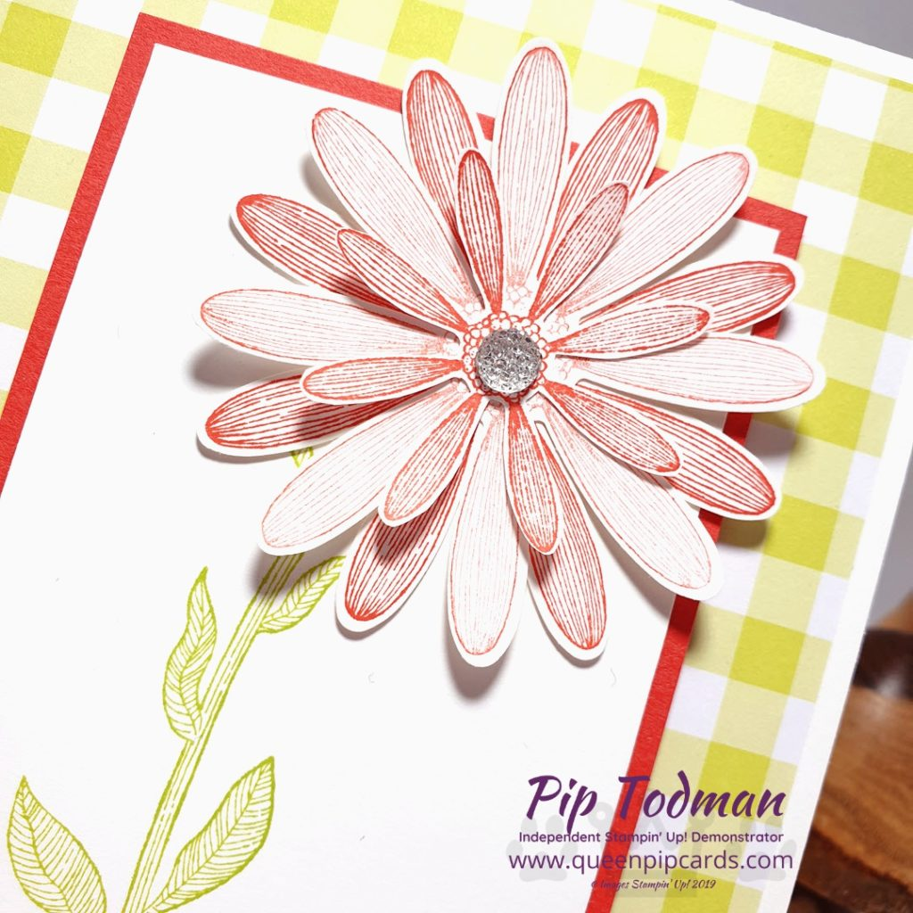 Gingham Gala Meets Daisy Lane in this fun card that's quick and easy to make. Great for crafting with the kids on a Saturday afternoon. Launches 4th June 2019. Pip Todman www.queenpipcards.com Stampin' Up! Independent Demonstrator UK