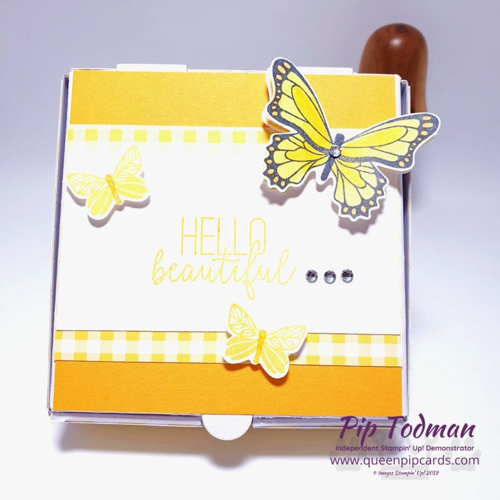Gingham Gala Butterfly Duet is today's featured project in my Facebook Live Moody Monday Pick Me Up video! Pip Todman www.queenpipcards.com Stampin' Up! Independent Demonstrator UK