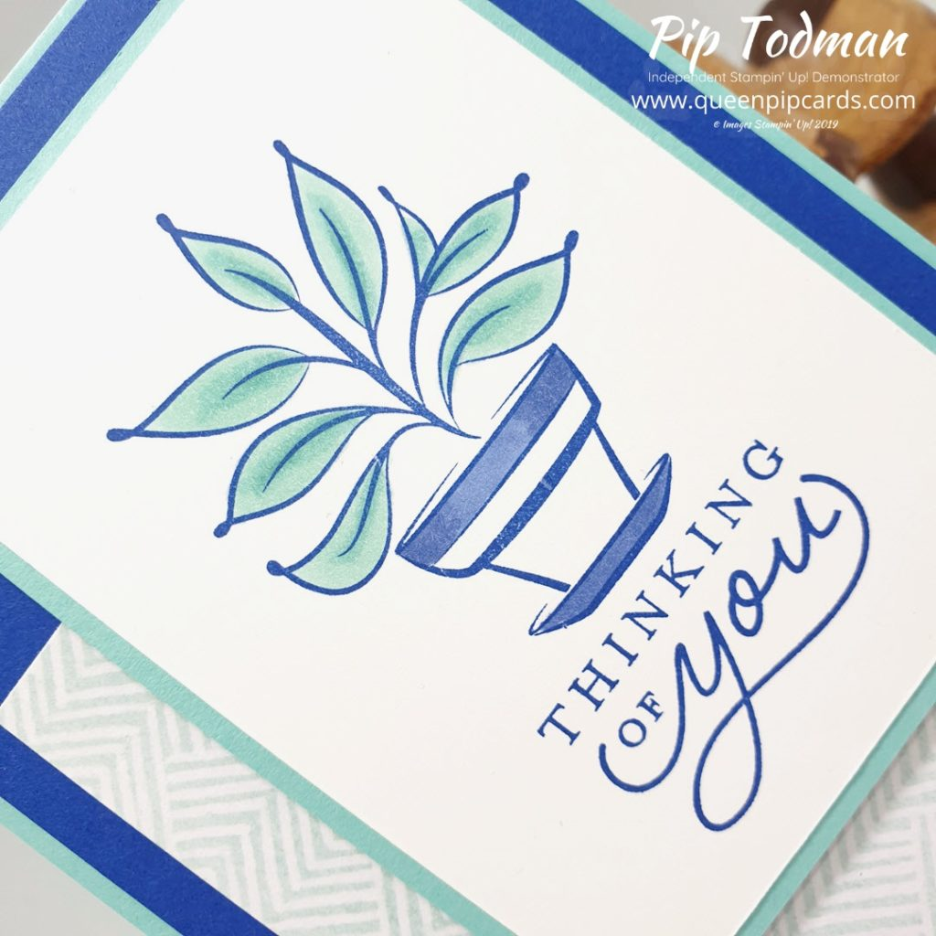 Just Because I'm Thinking Of You Cards a video showing the offset layout and colouring in techniques. Pip Todman www.queenpipcards.com Stampin' Up! Independent Demonstrator UK