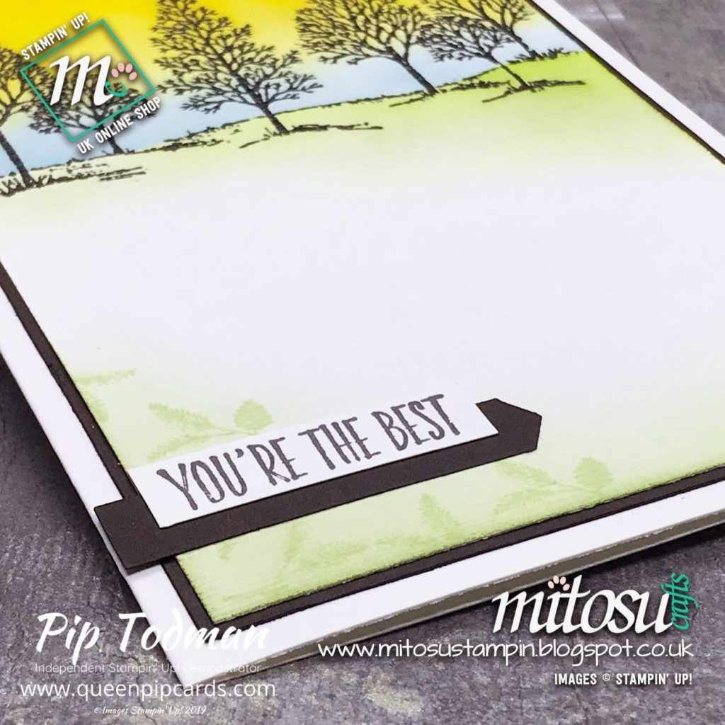 Lovely As A Tree By Mitosu Crafts sharing tips on blending and creating texture in their stamped images. My By Royal Appontment guest blogger! Pip Todman www.queenpipcards.com