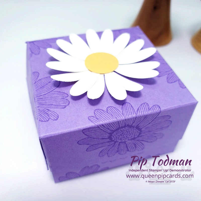 Daisy Lane Mini Soap Box is today's project! So cute and beautiful in Highland Heather colours! Pip Todman www.queenpipcards.com Stampin' Up! Independent Demonstrator UK