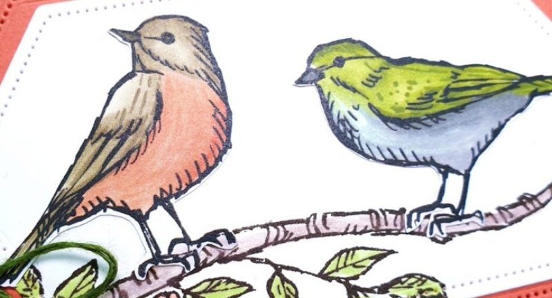 My First Pretty Cards and Paper Blog Hop With Bird Ballad