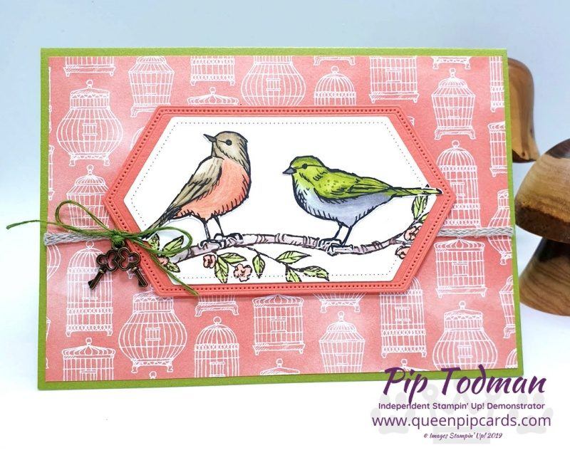 Pretty Cards and Paper Blog Hop with Bird Ballard! My first venture with a new hop team. I hope they like the 2 hand cut birds from this amazing paper pack. Pip Todman www.queenpipcards.com Stampin' Up! Independent Demonstrator UK