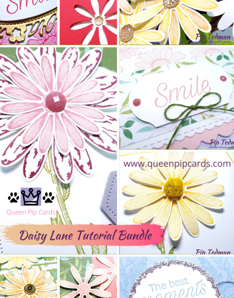 Daisy Lane makes me Smile everyday! Especially with a FREE tutorial available when you grab the bundle from me! Pip Todman www.queenpipcards.com Stampin' Up! Independent Demonstrator UK