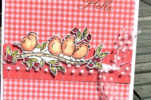 A little Bird told me that my teamie Sue had made some great cards! This week she shared it with us! Pip Todman www.queenpipcards.com Stampin' Up! Independent Demonstrator UK