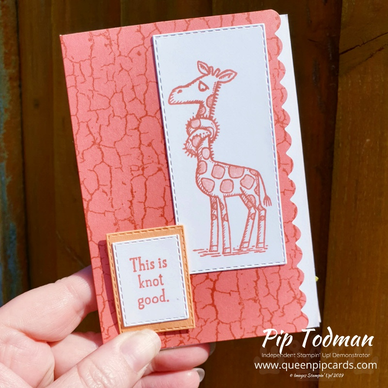 Scalloped Notecards for the Pretty Cards and Paper Blog Hop featuring Back On Your Feet stamp set and lots of Stitched dies. Pip Todman www.queenpipcards.com Stampin' Up! Independent Demonstrator UK