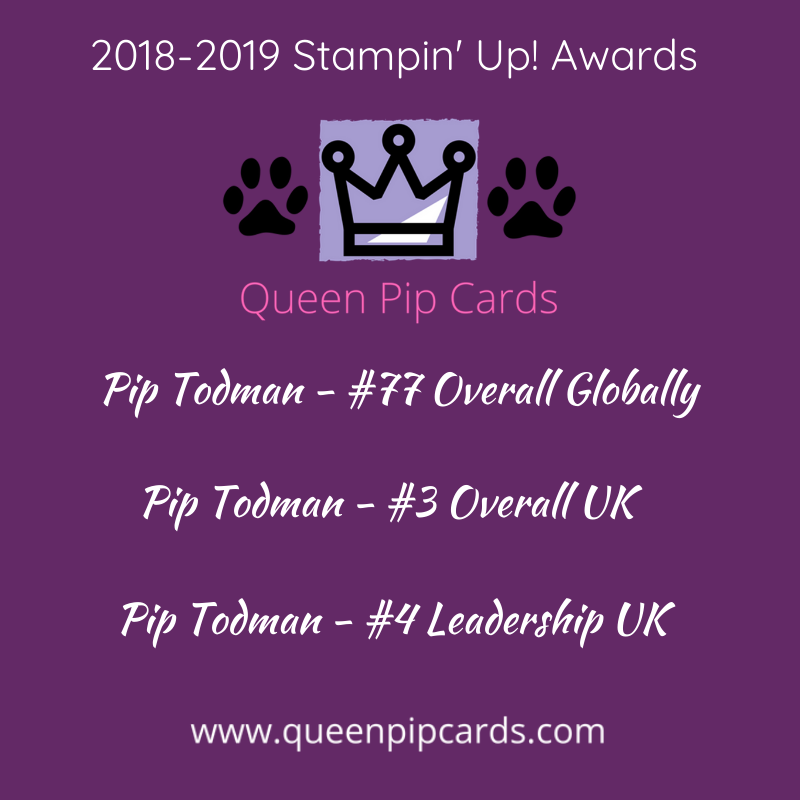 Pip Todman Stampin Up Demonstrator UK 2018-2019 Annual Awards I am on cloud nine to rank as I did!